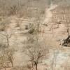 沙漠完成对Ashanti Gold的收购
