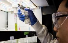 PNNL用于汽车 飞机的生物燃料生长藻类