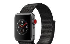 由于AppleWatch具有所有集成的健身和健康跟踪功能