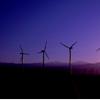 随着大流行扰乱全球能源前景 可再生能源发电激增