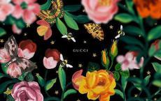 Gucci宣布计划减少每年两次时装秀 因为大流行席卷了奢侈品时装行业