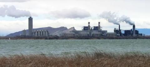 130年来可再生能源在美国的能源生产中首次超过煤炭